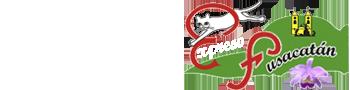 http://ficfusa.com/wp-content/uploads/2018/12/logo-aliados-expreso-fusacatan-la-bodega.png