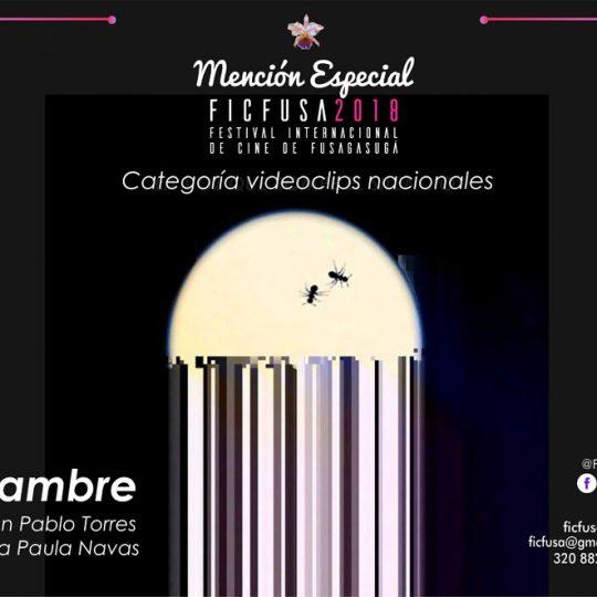 http://ficfusa.com/wp-content/uploads/2019/01/Video-clips-Nacional-Mencion-ficfusa-540x540.jpg